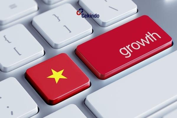 Market Entry into Vietnam