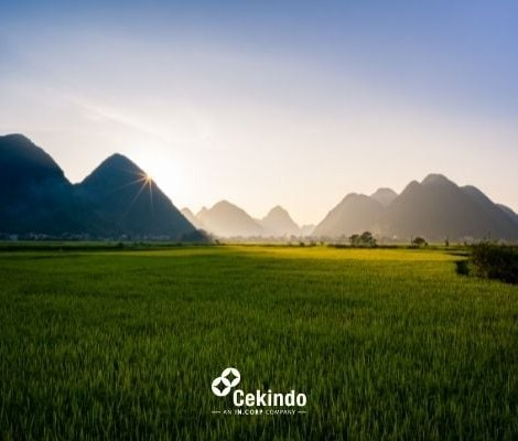 Invest Vietnam Tourism Industry