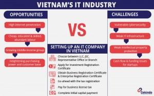 vietnam it industry