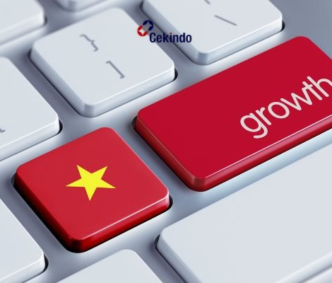 GDP Growth of Vietnam